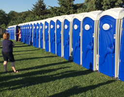 row of portable restrooms