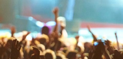 concert goers at festival
